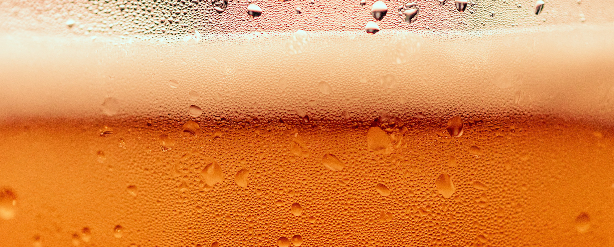 Beer bubbles deliciously in a cool glass