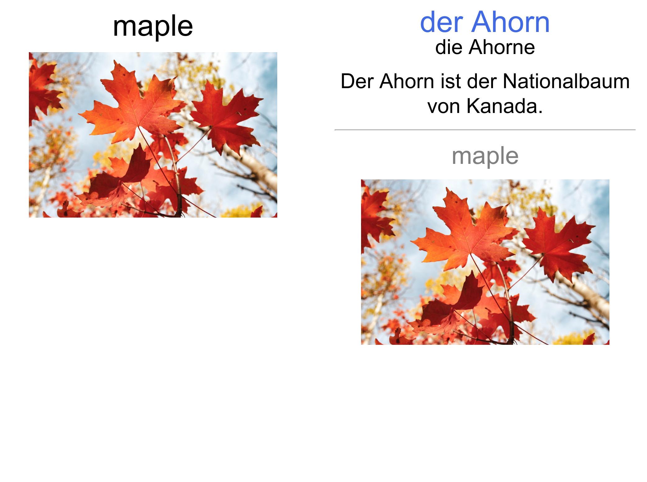 translation to german card